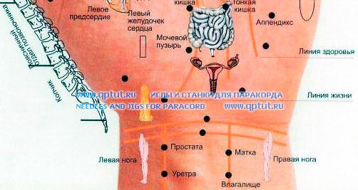 Акупунктура - направление в традиционной китайской медицине, в котором воздействие на организм осуществляется специальными иглами через особые точки на теле посредством введения их в эти точки и манипуляций ими. Считается, что эти точки находятся на меридианах, по которым циркулирует ци («жизненная энергия»). Метод используется для снятия боли или в лечебных целях.